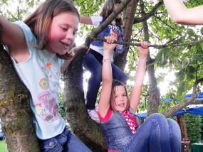 Spass im Kirschbaum