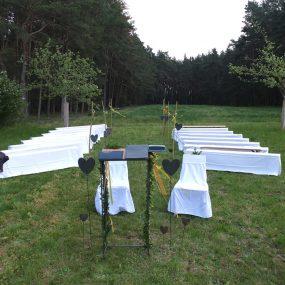 Eine grüne Hochzeit ...