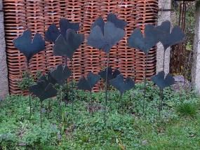 Ginkgo-Blätter in 3 Größen …