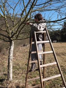 … ohne Leiter geht gar nichts mehr