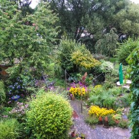 ... etwas später im Garten