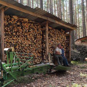 Holz spalten ... fleissige Leut' bei der Pause