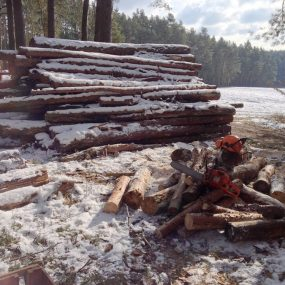 Waldarbeit, wenn's knackig kalt ist