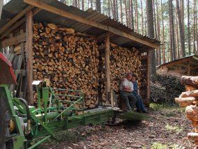 """Wieder ein """"Fach"""" voll Brennholz"""