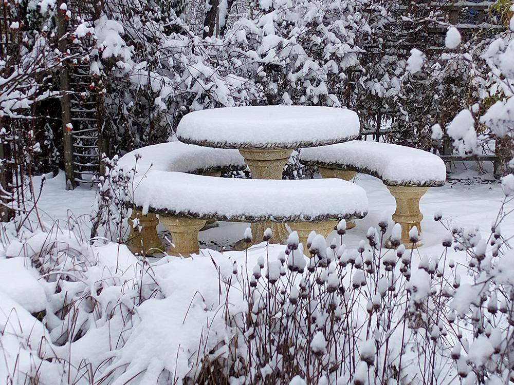 Führung im winterlichen Garten